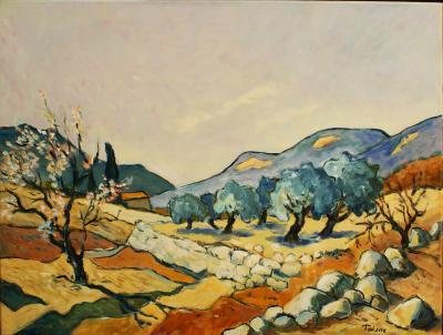 Les oliviers de Cotignac 65x50